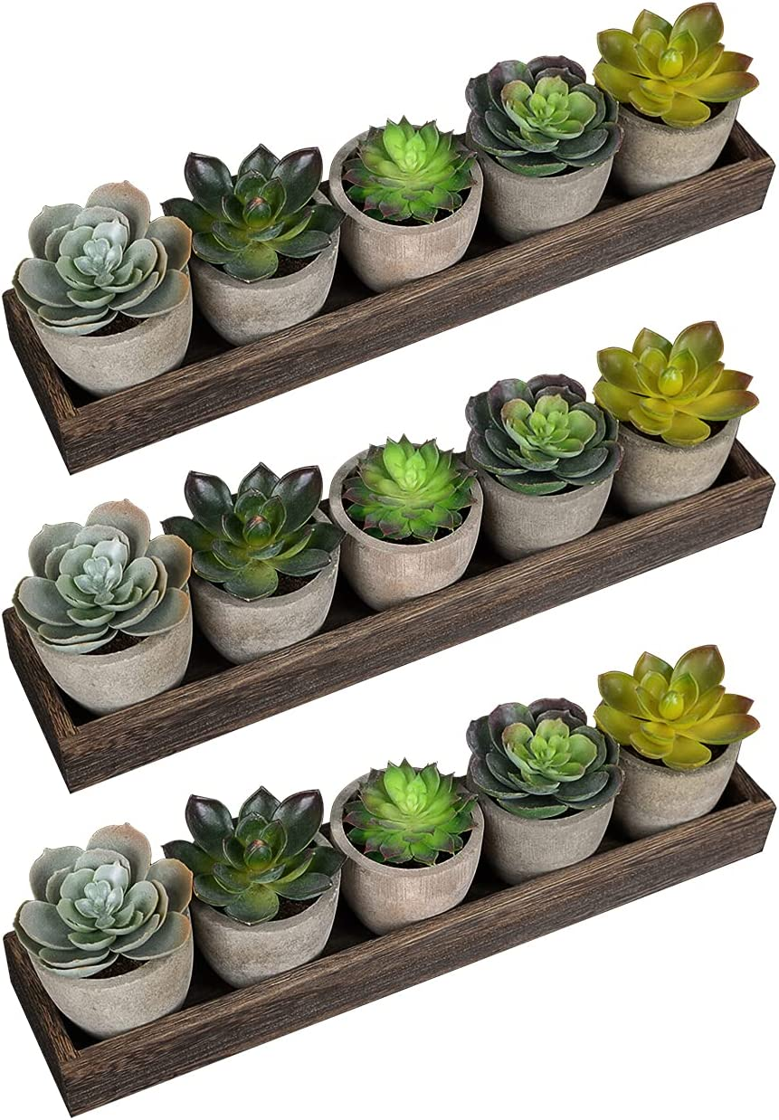 Set of 15 Rare Artificial Succulent Plants Realistic Pots 100% quality warranty! in Gre Gray