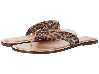 Bernardo Miami Sandal (Sand Cheetah Print Suede) Women
