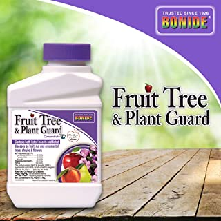 Best apple tree insecticide spray Reviews