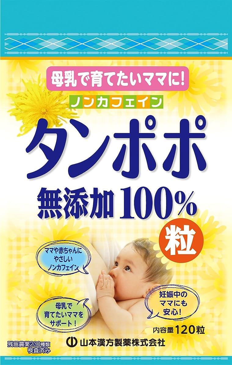 事実上リークトレイル山本漢方製薬 タンポポ粒無添加100% 120粒