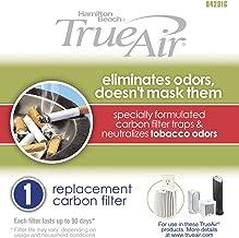 Hamilton Beach Febreze 04291G Odor Removal Filter for Tobacco