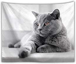 Sunnyillumine Playful as A Kitten Black and White Tapestry Lovely Wall Art Beach Throw Towel Yoga Mat (Playful Kitten 02)