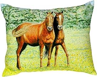 """Betsy Drake NC057 Two Horses No Cord Pillow,,16"""" X20"""""""