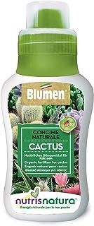 nutrisnatura - Abono Natural Cactus y Plantas Grasas, Verde