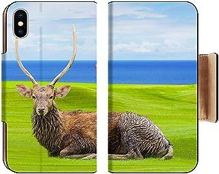 Liili Premium Apple iPhone Xs Flip Pu Wallet Case Chital Deer Spotted Deer Axis Deer on Green Image ID 39491092
