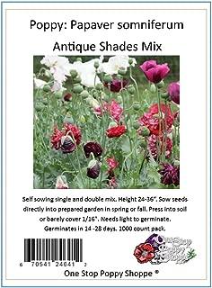 1000-Papaver somniferum Poppy Seeds-Antique Colors-One Stop Poppy Shoppe Brand.
