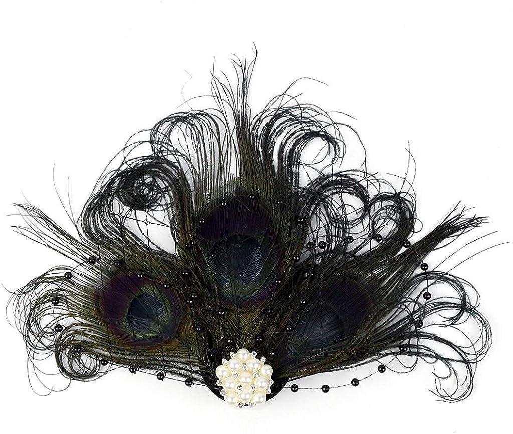Song Qing Feather Hair Clip 1920s Flapper Fascinator Wedding Headwear Bridal Headpiece