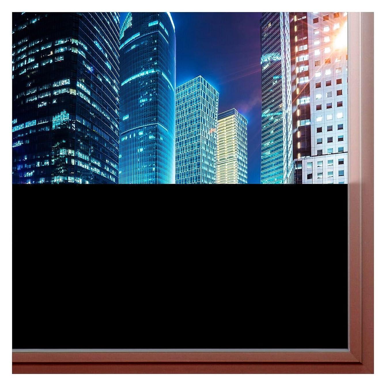 BDF BLKT Window Film Blackout Privacy (12in x 14ft)