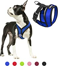 Gooby Dog Harness - Comfort X Head-in Small Dog Harness with Patented Choke-Free X Frame - Perfect on The Go No Pull Harne...