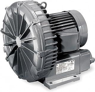 """0.56 Regenerative Blower 3 Phase, 200-230/460 Voltage, 1-1/4"""" (F) NPT Inlet Size"""
