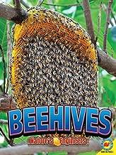 Beehives (Nature s Engineers)