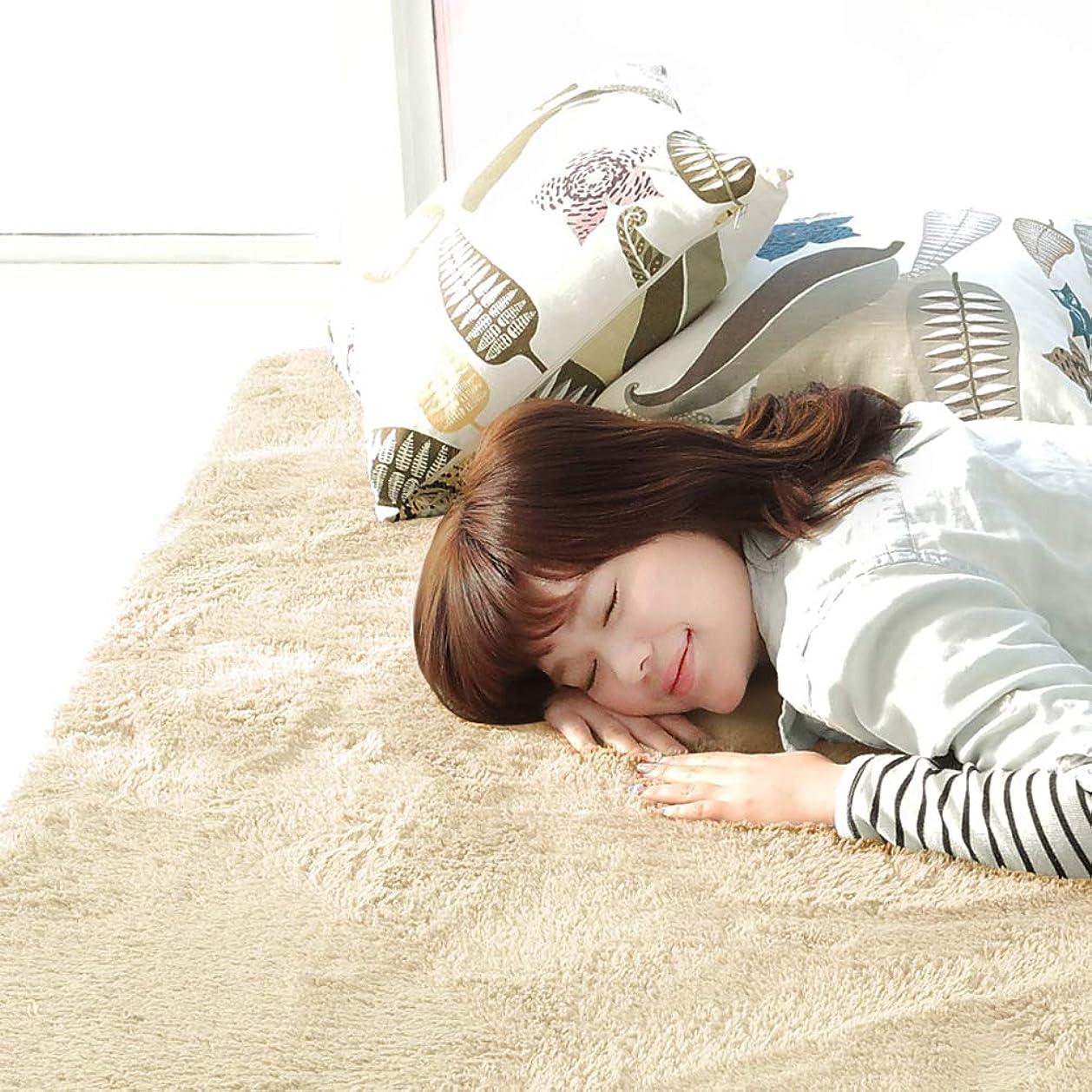 り歴史慰めやさしいマイクロファイバーシャギーラグ ベージュ 長方形(200×250cm) ラグマット ラグカーペット 絨毯