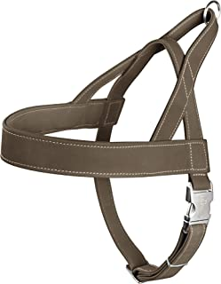 hunter Norwegian Harness for Dogs Hunting, 45 x 58-79 cm, Olive