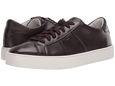 Santoni Jannas Lace Up Sneaker (Dark Brown) Men