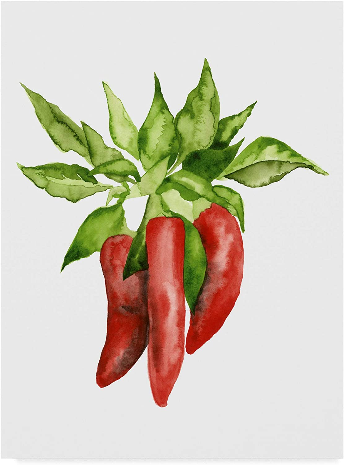 Trademark Fine Art Watercolor Veggie II by Naomi McCavitt, 14x19