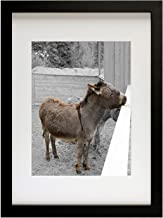 Golden State Art, Simple and Stylish Picture Frame with Ivory Color Mat & Real Glass (12x16, Black)