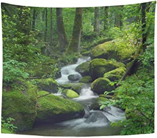 SSKBJTBDW Green Forest Cascade Falls Over Mossy Rocks Waterfall Water Stream River Tree Rain Tapestry Soft Polyester Cotton Appropriate Size Nice Wall Hanging Decoration