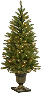 National Tree Company Pre-lit Artificial Christmas Tree For Entrances| Includes Pre-strung White Lights | Dunhill Fir - 4 ft