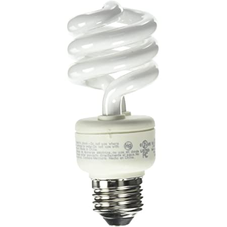 EcoSmart 60W Equivalent Soft White Spiral CFL (4-Pack)
