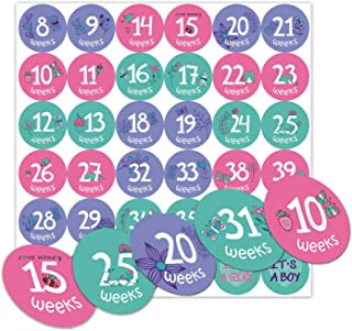 Pregnancy Weekly Stickers, Pregnancy Milestone Belly Stickers, Great Pregnancy Gifts for Mom to Be