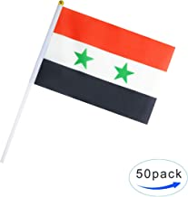 Kind Girl Hand Held Syria Flag Syrian Flag Stick Flag Small Mini Flag 50 Pack Round Top National Country Flags,Party Decorations Supplies for Parades,World Cup,Sports Events,Celebration