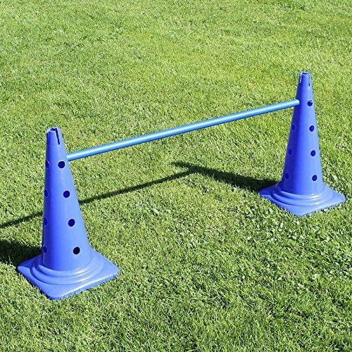 Superhund24 Kombi-Kegelhürde 50, mit Stange 100 cm, für Agility-Taining (blau)