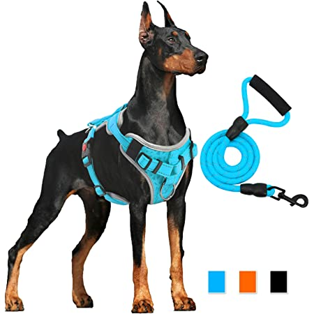 ThinkPet No Pull Dog Harness with Reflective Neon Dog Lead S Green//150cm Lead Set Strong Padded Dog Vest Harness and Dog Lead Set