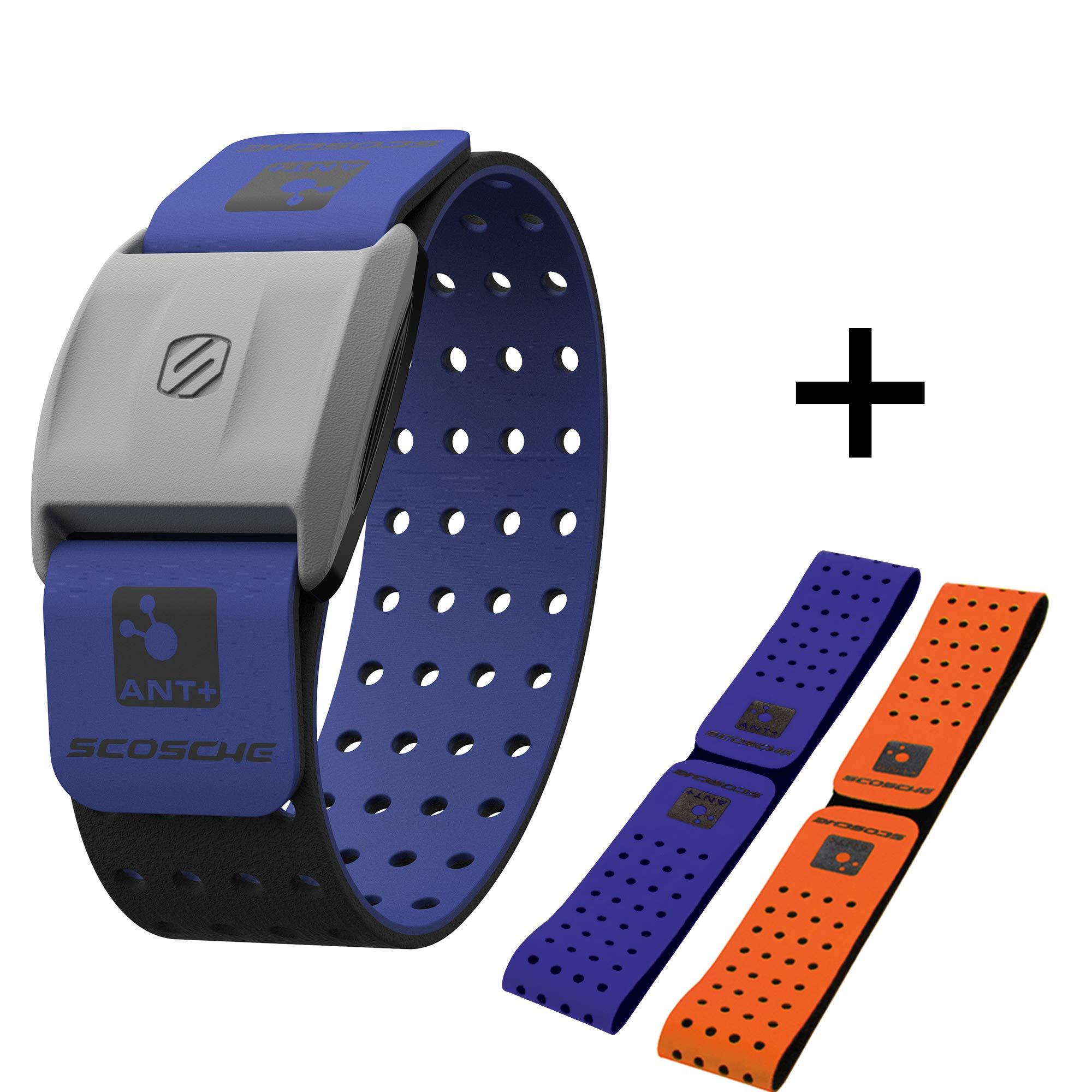 Scosche Rhythm Heart Monitor Armband