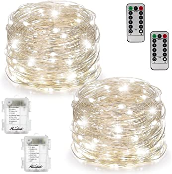 2-Set Warmtaste 100 LED 33Ft String Copper Wire Firefly Lights