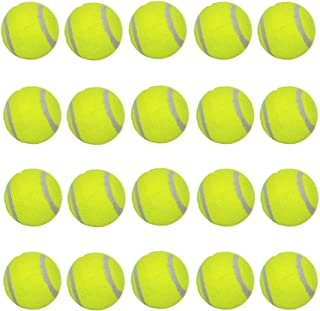 LUCKYERMORE Dog Tennis Balls 20 Pack Pet Tennis Ball for Small Dogs Premium Fetch Toy Non-Toxic Non-Abrasive Material 2 Inch Mini Tennis Ball for Puppy Small Dog