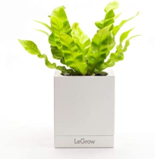 LeGrow Modular Pot With Tray – Grow Indoor Herb Garden, Succulents, and More in Small Flower Pot Modules (Plants Not Inclu...