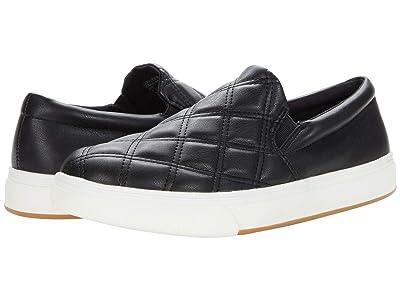 Steve Madden Coulter-Q Sneaker (Black) Women