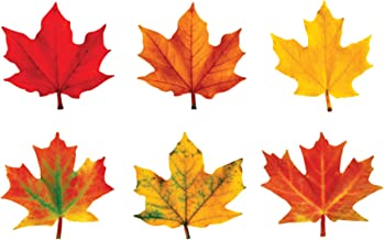 TREND enterprises, Inc. Maple Leaves Classic Accents Variety Pack, 36 ct