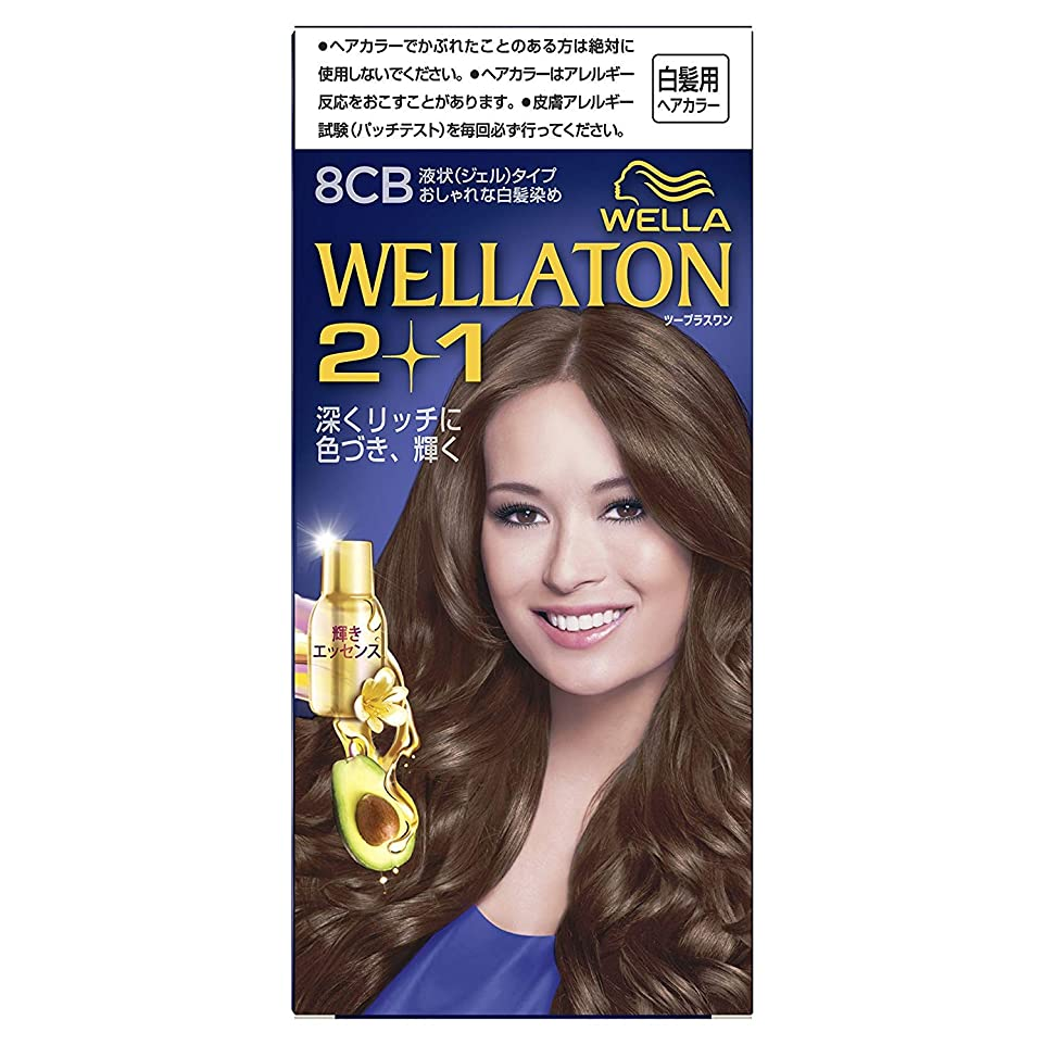 年金南東めるウエラトーン2+1 白髪染め 液状タイプ 8CB [医薬部外品] ×6個