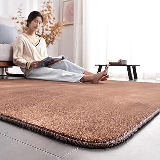 AICOMRI ラグ カーペット 北欧 洗える 185×185 ラグマット 2畳 滑り止め付 防ダニ 抗菌 じゅうたん ホットカーペット カバー ラグマット オールシーズン 冬 暖かい 床暖房対応 カーペット フランネル 絨毯 ムジ柄·ブラウン