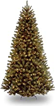 National Tree 9-Feet North Valley Spruce TRE, 700 Clear Lights (NRV7-300-90)