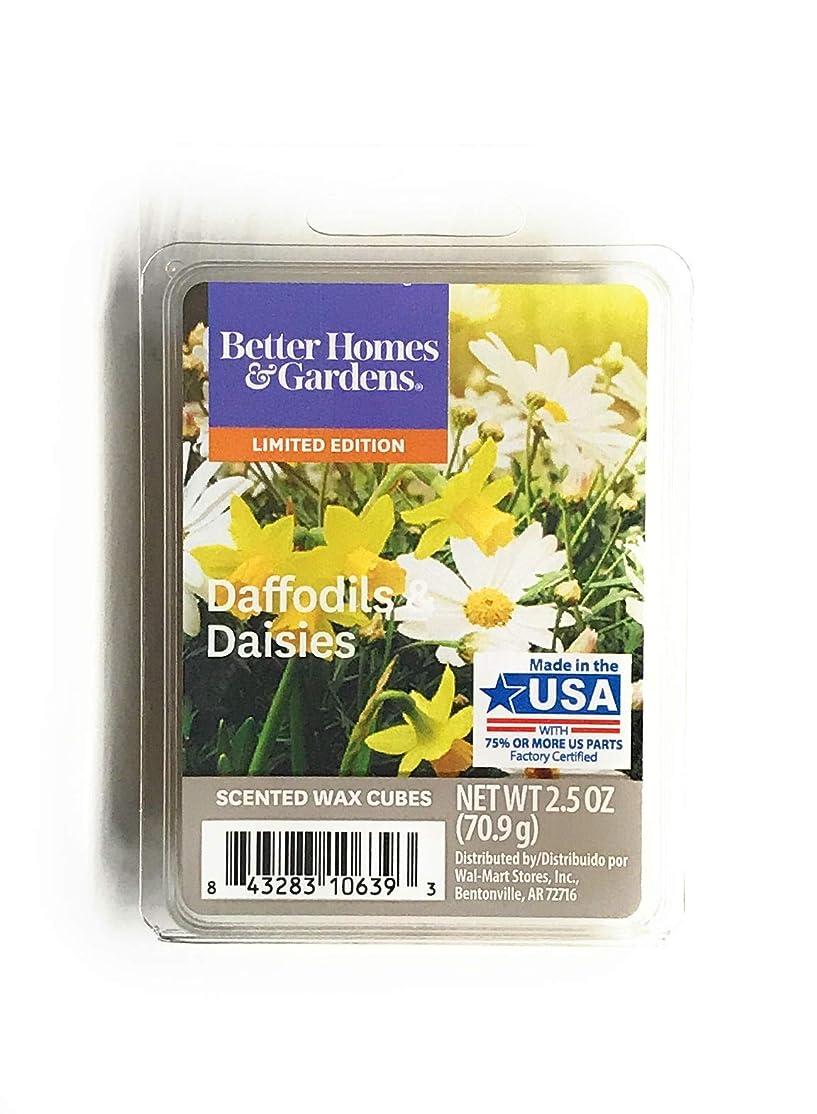 はっきりと転倒栄光のBetter Homes & Gardens 香り付きワックスキューブ 2.5オンス 2.5 Oz