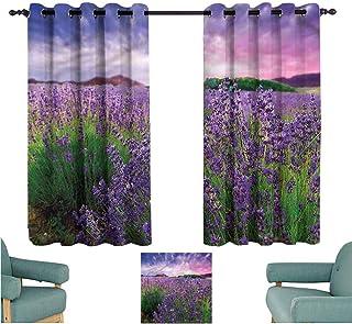 Agoza Grommet Window Curtains Lavender Tihany Hungary Sunset Energy Efficient, Room Darkening W55x63L