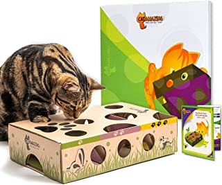 cat treat puzzle ball