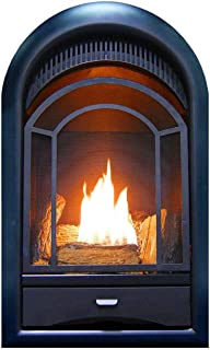 Vent Free Gas Fireplace Insert - T-Stat, Ventless, Arched Door 15,000 BTU - by Mogullifestyle