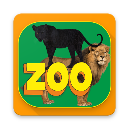 zoo felino