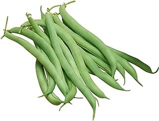 Burpee White Half Runner Pole Bean Seeds 2 ounces of seed