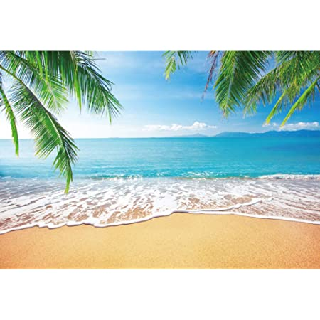 OFILA Tropical Beach Backdrop 14x10ft Hawaiian Beach Party Photos Background Palm Trees Ocean Summer Holidays Travel Photos Bridal Shower Shoots Kids Birthday Portraits Studio Video Props