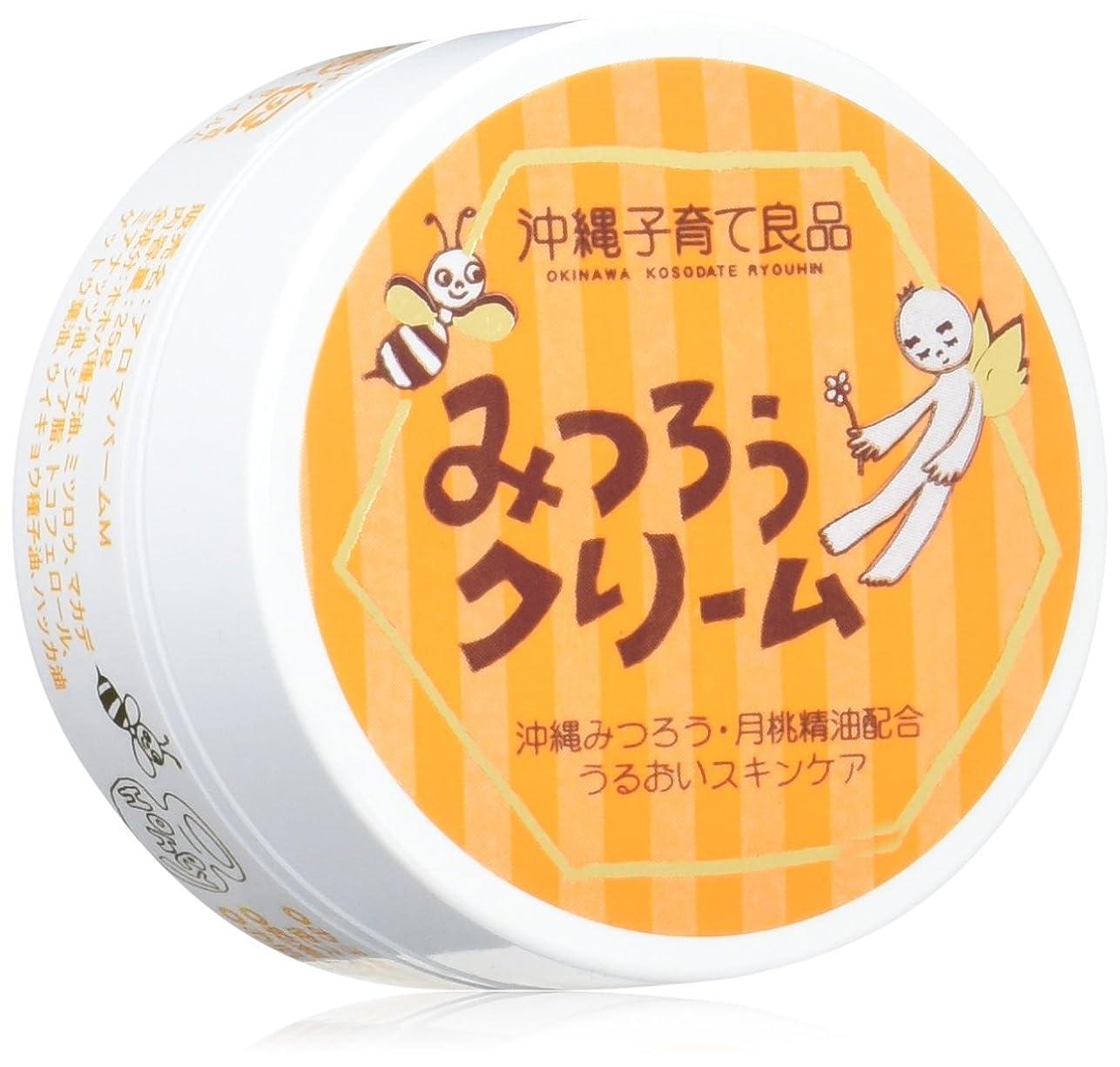 イサカハドル葉を集める沖縄子育て良品 みつろうクリーム (25g)