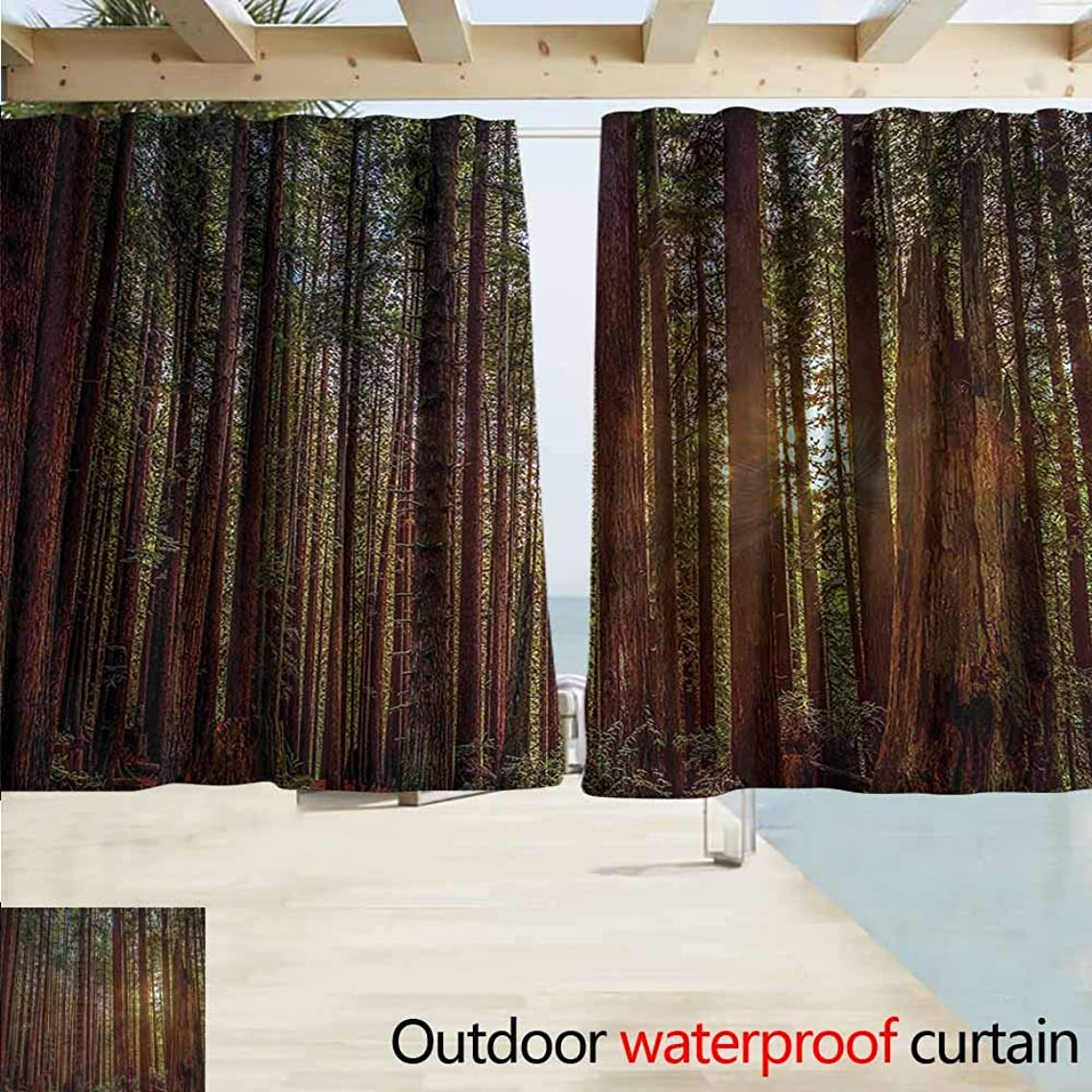 MaryMunger Outdoor Waterproof Curtains Forest Redwood Forest Park USA Darkening Thermal Insulated Blackout W72x63L Inches