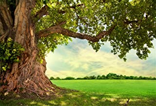 CSFOTO 10x7ft Background for Huge Green Tree Branch Photography Backdrop Rural Scenery Field Spring Summer Country Scene Picnic Leisure Vacation Tour Holiday Photo Studio Props Vinyl Wallpaper