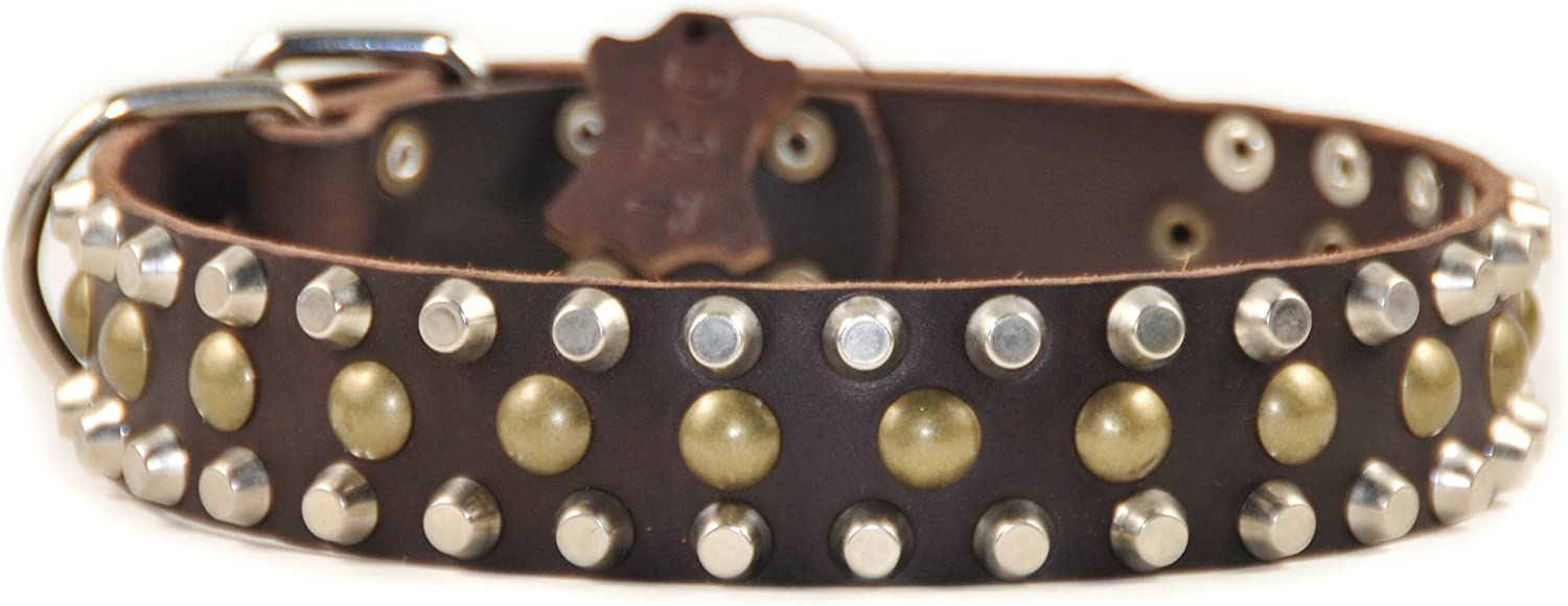 Dean and Tyler STUDLY , Leather Dog Collar with Pyramids and Studs  Brown  Size 30Inch by 11 2Inch  Fits Neck 28Inch to 32Inch