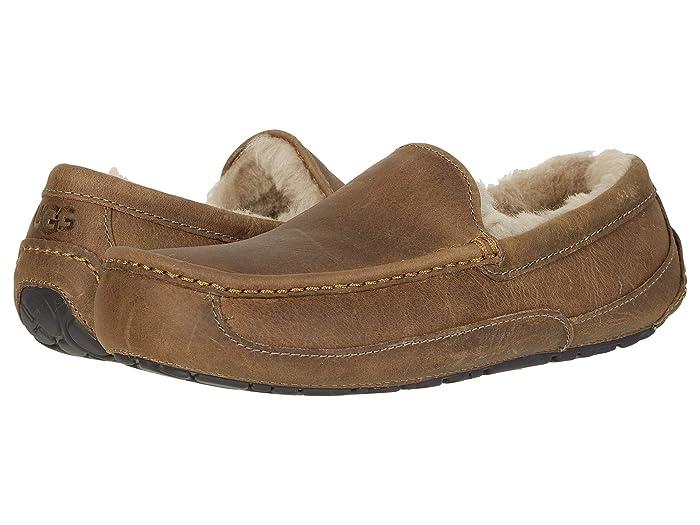 UGG  Ascot (Tan) Mens Slippers