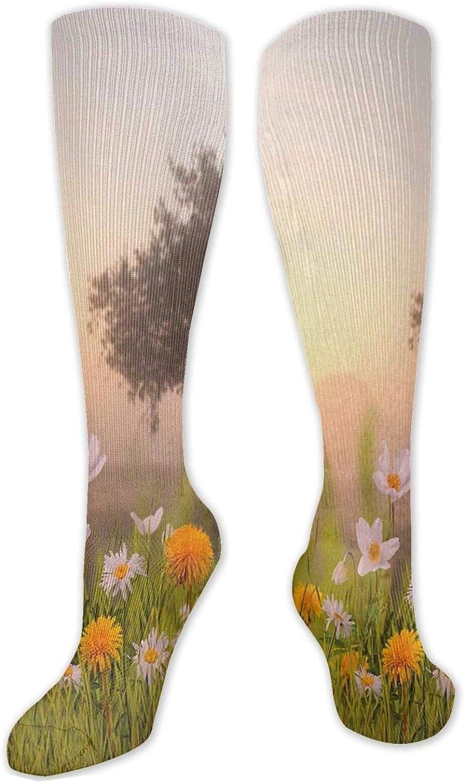 Unisex Limited time 100% quality warranty! sale Fashion Knee High One Size(50CM Socks