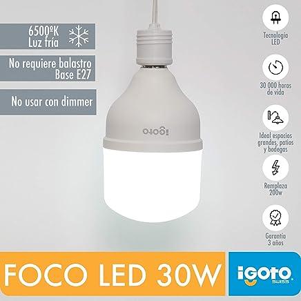 iGoto F10530 Foco Led T100, 30W Luz Fría